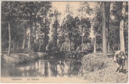 28499g   RIVIERE - LA SENNE - 1921 - Beersel - Beersel