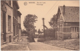 28517g  RUE DE LOTH - Beersel - Beersel