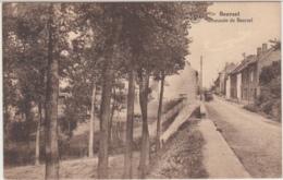 28520g  CHAUSSEE DE BEERSEL - Beersel - Attelage - Beersel