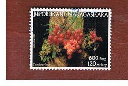 MADAGASCAR -  MI  2600  - 2003  FLORA: TAMBOURISSA    -  USED° - Madagascar (1960-...)