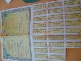 Rare : Empire Cherifien Obligation De 1000 Francs 4% 1930/1931 - Shareholdings