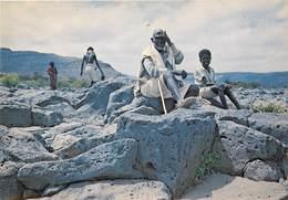 Afrique - Africa - Djibouti - La Vie Des Nomades - Semi Moderne Grand Format - état - Gibuti
