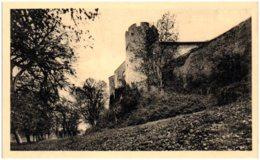 21 Chateau De MONT-SAINT-JEAN - Autres Communes