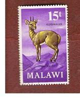 MALAWI - SG 381  -      1971 ANIMALS: KLIPSPRINGER  -  USED° - Malawi (1964-...)