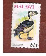 MALAWI - SG 480  -      1975 BIRDS: AFRICAN COMB DUCK -  USED° - Malawi (1964-...)