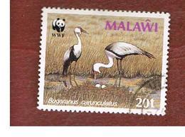 MALAWI - SG 761  -      1987 WWF: WATTLED CRANES   -  USED° - Malawi (1964-...)