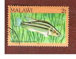 MALAWI - SG 689 - 1984   FISHES: MALAWI EYE-BITER   -  USED° - Malawi (1964-...)