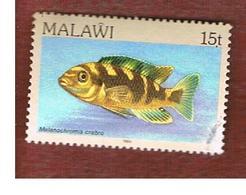 MALAWI - SG 694 - 1984   FISHES: BUMBLEBEE CICHLID   -  USED° - Malawi (1964-...)