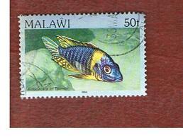 MALAWI - SG 698 - 1984   FISHES: BLUE GOLD PEACOCK   -  USED° - Malawi (1964-...)