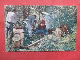 Moonshine Still In Eastern Carolina    >   Ref    3562 - Professions