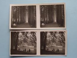 DEURNE Ter Rivierenhof ( Série N° 251 ) ANTWERP Stéréo > 6 Stuks > ( Zie / Voir Photo Pour Detail ) ! - Photos Stéréoscopiques