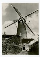 D165 - Middelharnis Molen De Dankbaarheid - Molen - Moulin - Mill - Mühle - Nederland