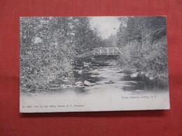 Trout Stream  Liberty    New York      Ref    3562 - NY - New York