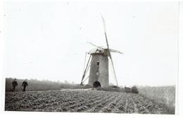 WORTEL - Merksplas - Kleine Foto 10,5 X 6,7 Cm - Stenen Molen Op Eind Aardappelveld - Merksplas