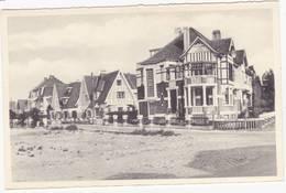41443   - Coq  Avenue Emile   Gracie - De Haan