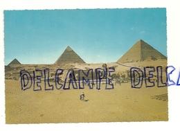 Egypte. Les Pyramides De Gizeh Et Le Sphinx. Krüger - Egypte