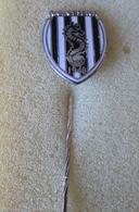 A.C. Cesena Calcio Distintivi FootBall Soccer Pins Spilla Forli Emilia Romagna - Calcio