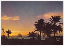 °°° 13650 - VENEZUELA - SUNSET AT THE CARIBBIAN SEA - 1976 °°° - Venezuela