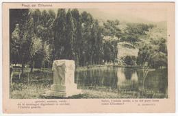 °°° 13652 - CARTOLINA CON VERSI DI CARDUCCI FONTI DEL CLITUNNO - PARTITA DA AMELIA - 1916 °°° - Filosofia & Pensatori