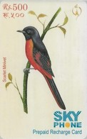 Nepal - Nepal Telecom - Birds, Scarlet Minivet, Exp.30.06.2009, Prepaid 500Rs, Used - Nepal