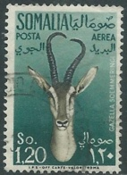1955 SOMALIA AFIS POSTA AEREA USATO ANIMALI 1,20 S - UR31-3 - Somalia (AFIS)