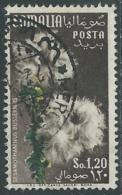1955 SOMALIA AFIS USATO FIORI 1,20 S - UR31 - Somalia (AFIS)