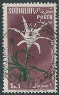 1955 SOMALIA AFIS USATO FIORI 1 S - UR31-3 - Somalia (AFIS)