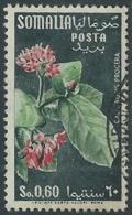 1955 SOMALIA AFIS USATO FIORI 60 CENT - UR31-2 - Somalia (AFIS)