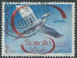 1959 SOMALIA AFIS POSTA AEREA USATO UCCELLI 2 S - UR31-6 - Somalia (AFIS)
