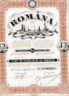 ROMÂNA - Shareholdings