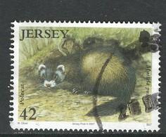 Jersey, Mi 1273 Jaar 2007,  Gestempeld - Jersey