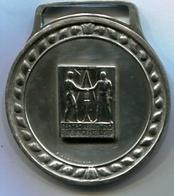 CENTRO ARGENTINO DE INGENIEROS - HOMENAJE A LOS 50 AÑOS DE SOCIO. MEDAL MADE BY PIANA, BUENOS AIRES. CIRCA 1950 -LILHU - Fichas Y Medallas