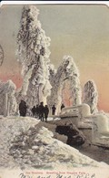 PC Ice Scenery - Greeting From Niagara Falls - 1906 (42979) - Buffalo