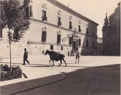 ESPAGNE UDEBA Parador Del Condestable DAVALOS 1954 Photo Amateur   Format Environ 7,5 X 5,5 Cm - Esquela
