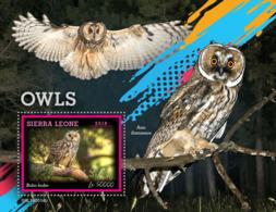 Sierra Leone 2019 Fauna  Owls  S201907 - Sierra Leone (1961-...)