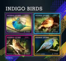 Sierra Leone 2019 Fauna   Indigo Birds   S201907 - Sierra Leone (1961-...)