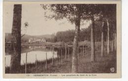 89 - VERMENTON - Les Peupliers Du Bord De La Cure (Q157) - Vermenton
