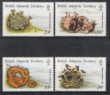 British Antarctic Territory 1989 Lichens MNH CV £6.75 - Unused Stamps