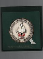 Grosse Médaille De Table     Phénix  1974 __1984   CEA  _EDF    80 Mm - France