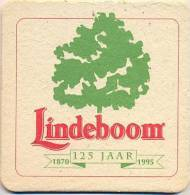 #AUT-03-158 Viltje Lindeboom - Sous-bocks