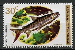 Rwanda - Ruanda 1973 Y&T N°554 - Michel N°578 *** - 30c Poisson - Rwanda