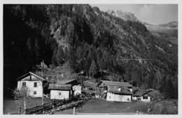 """M08556 """"VAL DI GENOVA (PINZOLO-TRENTINO) MALGA TODESCA"""" CART. ORIG. NON SPED. - Trento"""