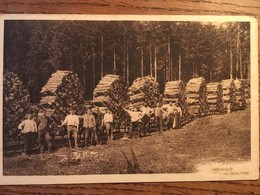 CPA, Hohwald, Holzschlitter, Coupe Du Bois, Métiers Du Bois, Bucherons, Forestiers, Animée, Bas-Rhin, 67 - Frankreich