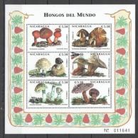 O1202 1998 NICARAGUA FLORA NATURE MUSHROOMS HONGOS DEL MUNDO 1KB MNH - Mushrooms