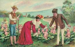 Allevamento Di Neonati, Riproduzione Da Orig., Reproduction, Illustrazione, (F59) - Humor