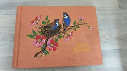 Album Vierge Pour Cartes Postales 100 Pages - Matériel