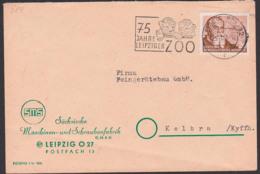 Leipzig MWSt. 75 Jahre Leipziger Zoo, Löwe, Leo, Löwenkinder, DDR 384 24 Pfg. Lucas Cranach D. Ältere - [6] Oost-Duitsland