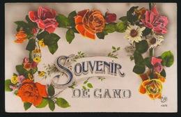GENT  - SOUVENIR DE GAND - Gent