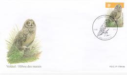 FDC  - Hibou Des Marais / Velduil  - Oiseau De BUZIN - Timbre N°4218 - RP - 1985-.. Oiseaux (Buzin)