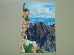ETATS UNIS AZ ARIZONA ON THE HIGH NORTH RIM OF THE  GRAND CANYON......... - Grand Canyon